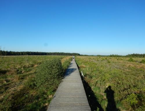 Grand Trail des Lacs et Châteaux 105 km: langs spiegel gladde meren en roestige rivieren