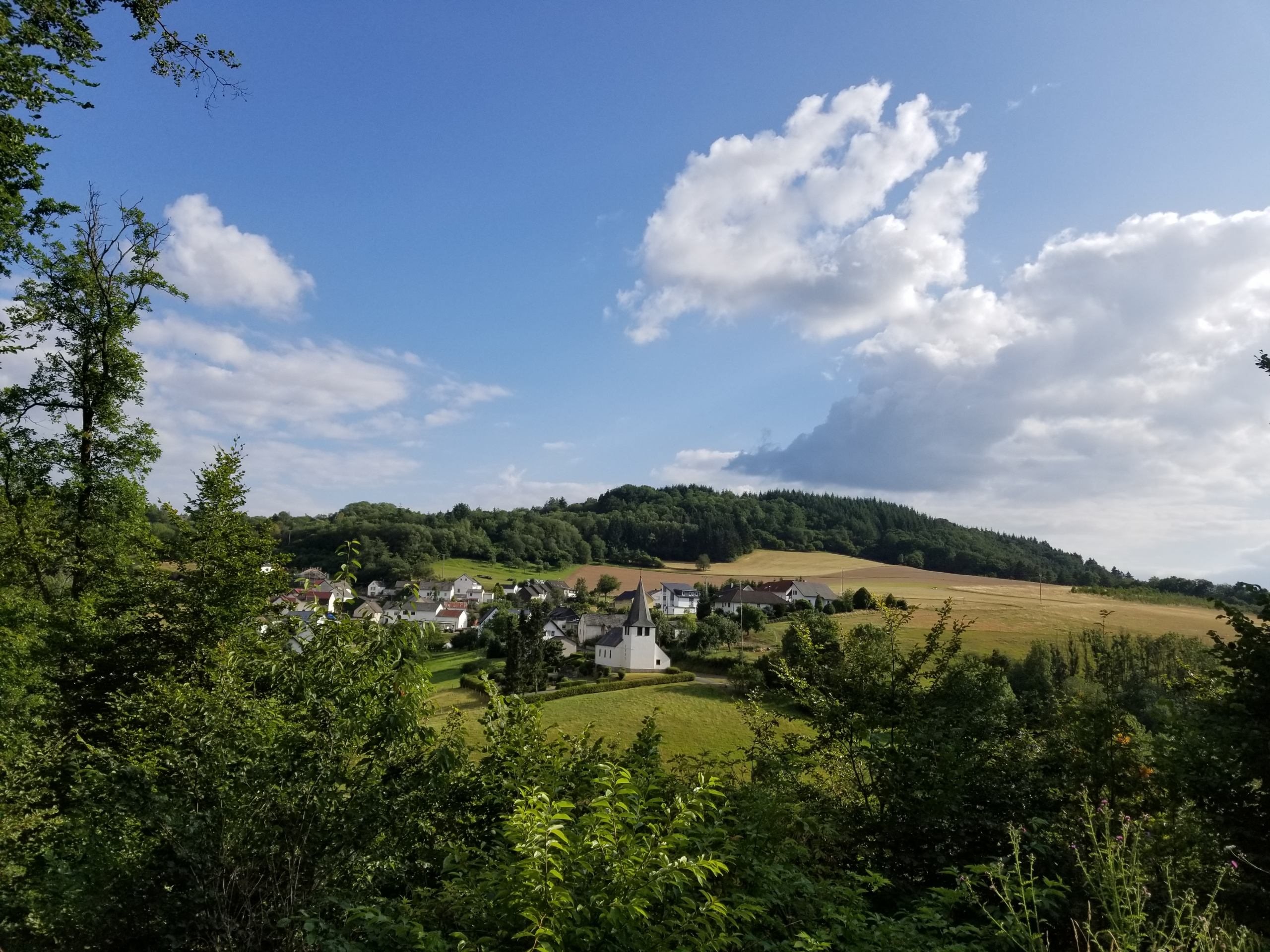 View on Trittscheid