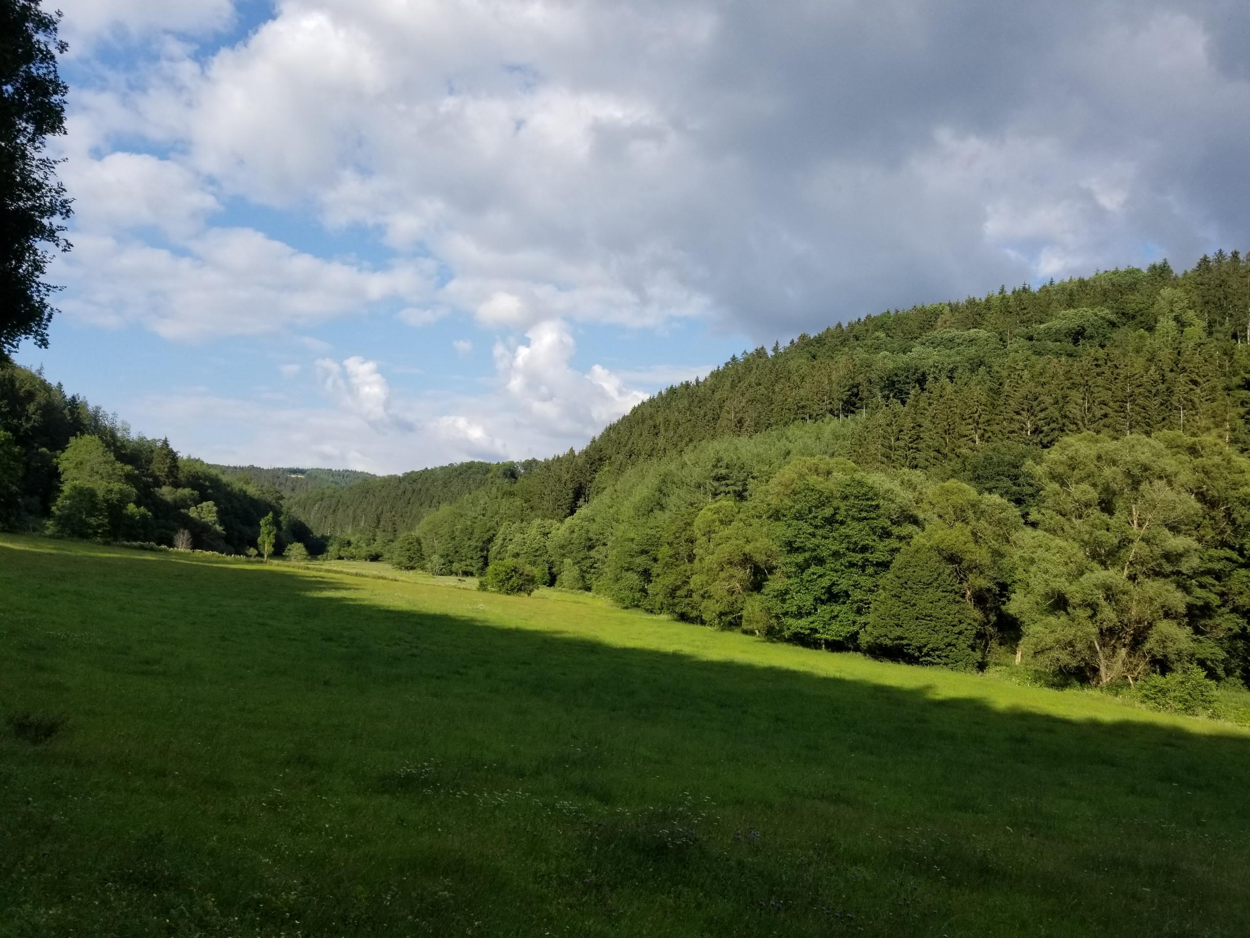 Lieser valley