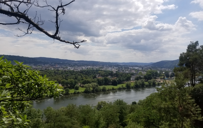 Mosel with Trier in the background