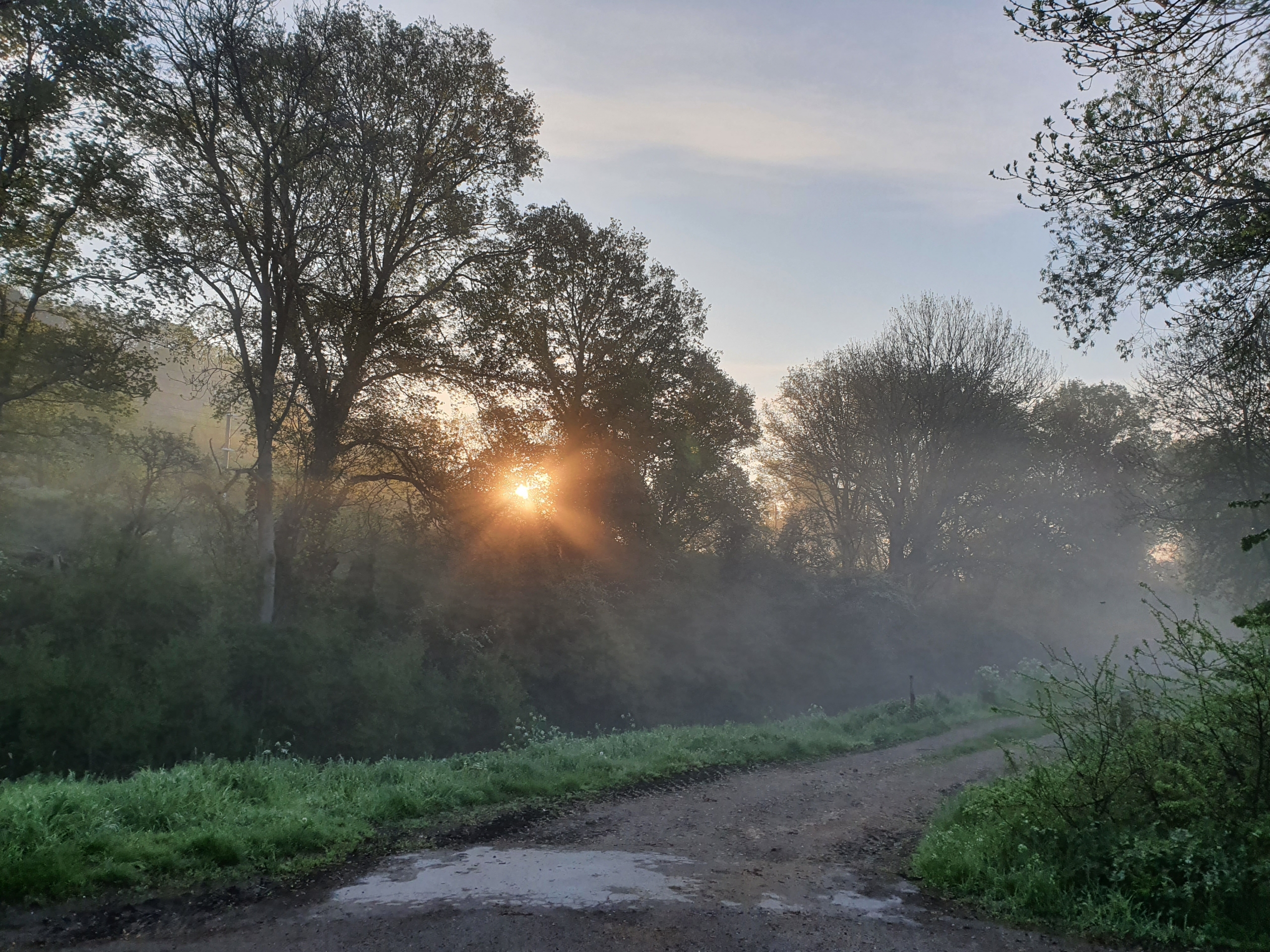 Eerste zon op de Spykerweg bij Elten, de twijfel slaat toe